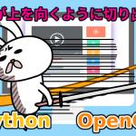 Python(OpenCV) 顔が上を向くように写真から切り出す方法
